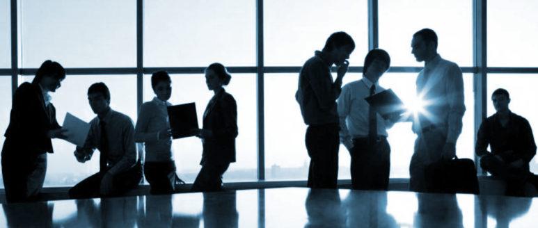 Delega di Funzioni in materia ambientale  Solo le aziende di grandi dimensioni possono delegare funzioni.