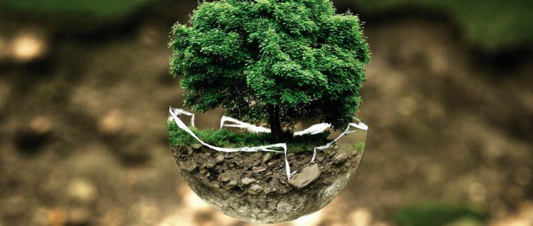 Bando per azioni su ambiente e clima